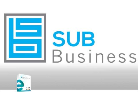 Sub Business ERP